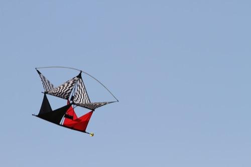 Vector Kites - Model Airplane News