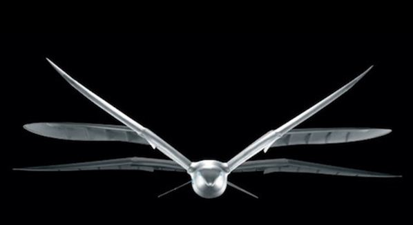 Festo, a graceful RC flying bird (really!)