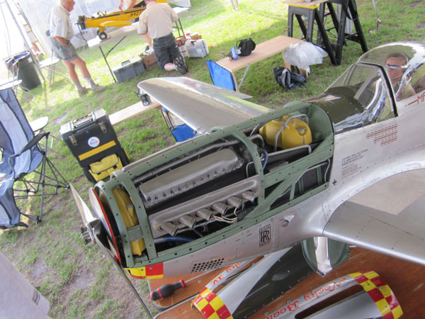 P-51D Mustang, Jean-Francois Bobo, V-12 Rolls Royce Merlin engine, DLE 55 engine, photo 4, pilot, flying