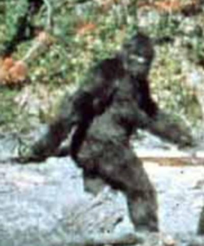 Bigfoot is here :-)
