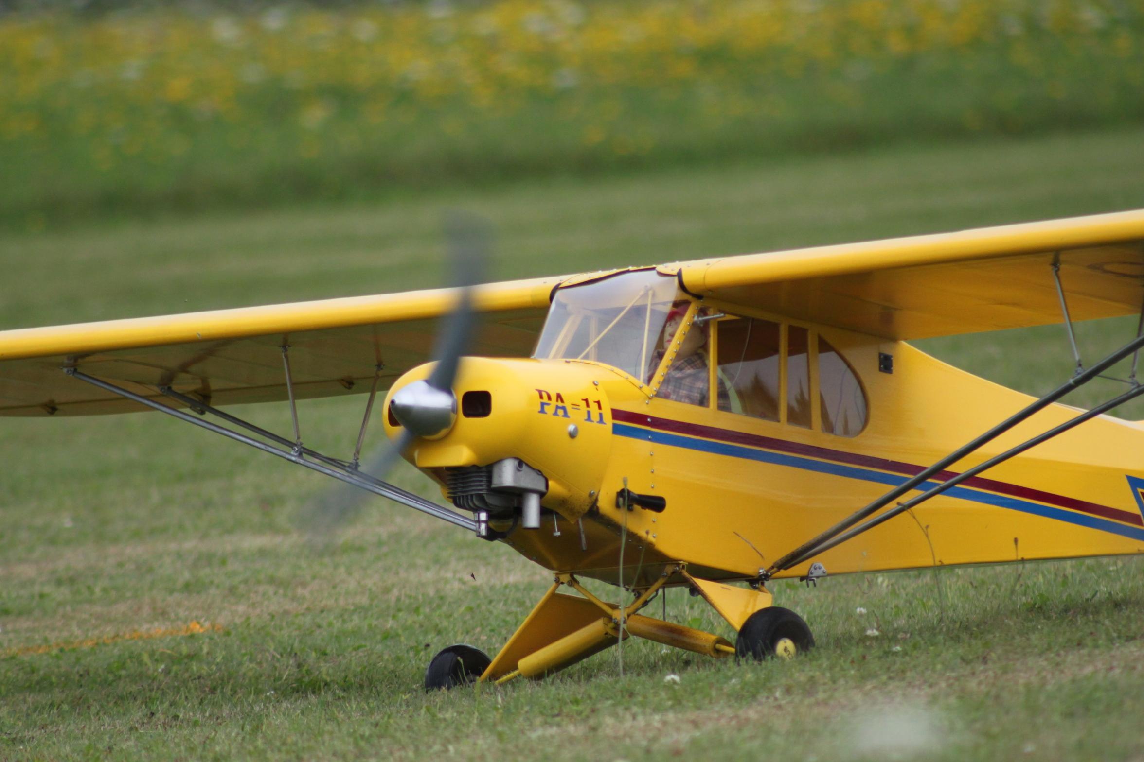 Richard Esseltine - Piper Cub PA 11 - Expert Scale
