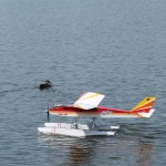 The local ducks shared the water with us...no problems pilots & ducks gave each other lots of room.