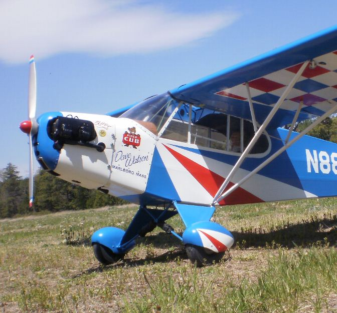Road to Top Gun Update — Jack Buckley, Reed Clipped-Wing Cub