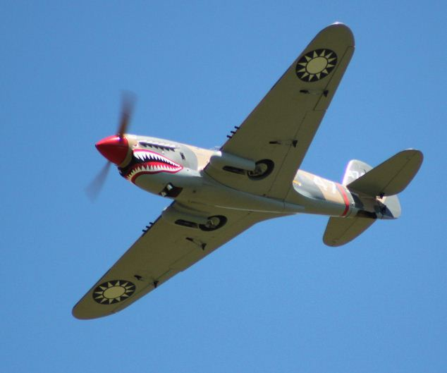 Flying Warbirds: a Checklist for Success