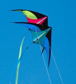 Best kite flyer in the world!
