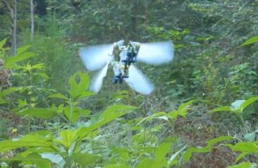 RC Dragonfly Spycraft [VIDEO]