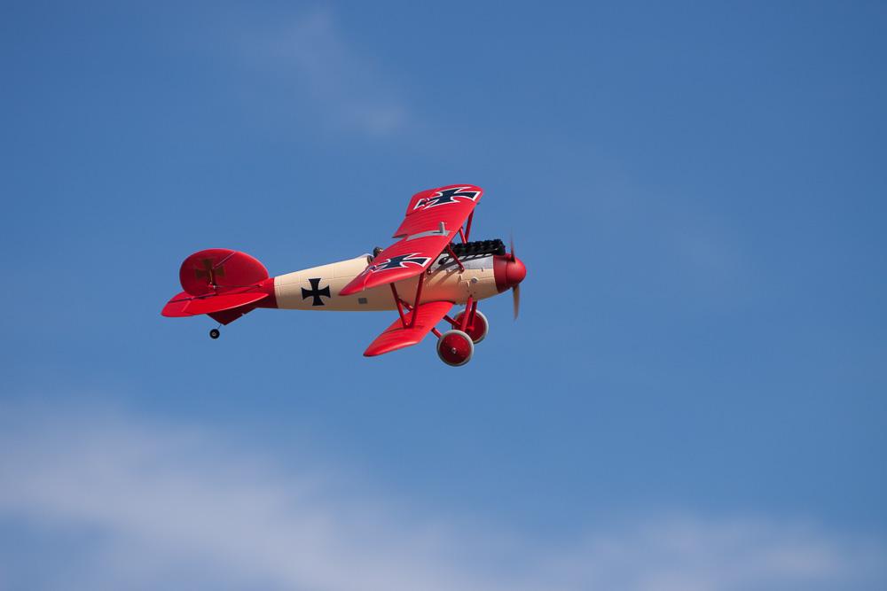 Parkzone Albatros D.Va BNF