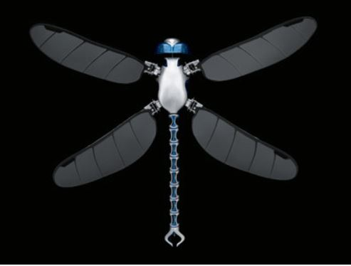 RC Dragonfly