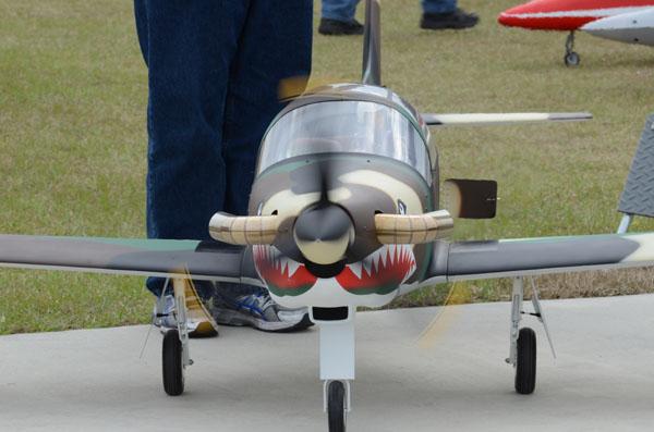 Andy Kane's SIAI Marchetti SF-260