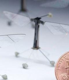 Meet Robo-Fly, the world's smallest flying robot