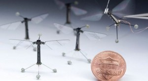 Meet Robo-Fly, the world's smallest flying robot