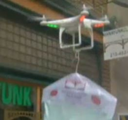 Dry-Cleaning Delivery Drone