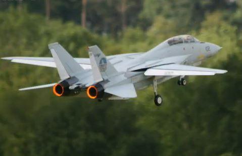 Giant Swing-Wing F-14