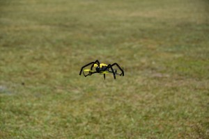 The Spooky Spider is sure to delight anyone of all ages..