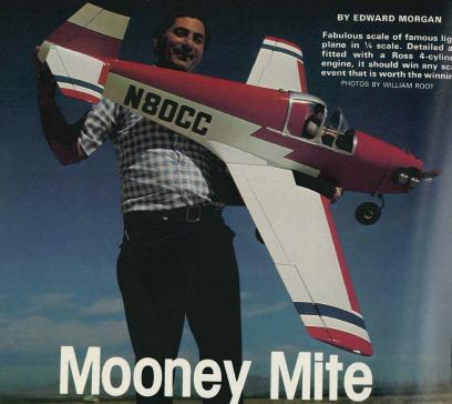 Mooney Mite
