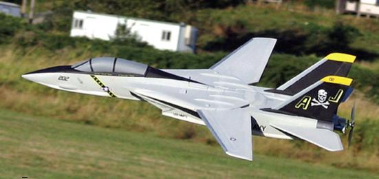 F-14 Tomcat PARK Jet
