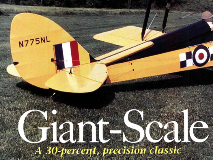 Giant Scale Tiger Moth
