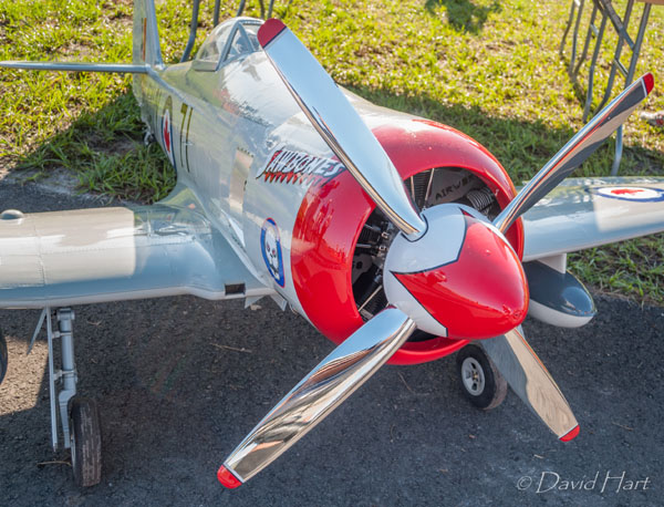 Road to Top Gun — Walt Carnes — Hawker Sea Fury