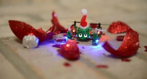 Proto-N Drone V.S. A Nutcracker