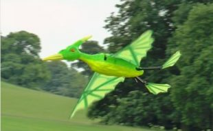 Radio Control Pterodactyl
