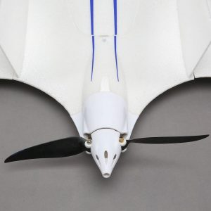 e-flite-opterra-2m-flying-wing-10