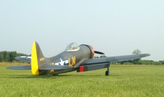 P47YellowTail