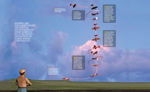 Aerobatics Made Easy: The Flat Spin to a Blender
