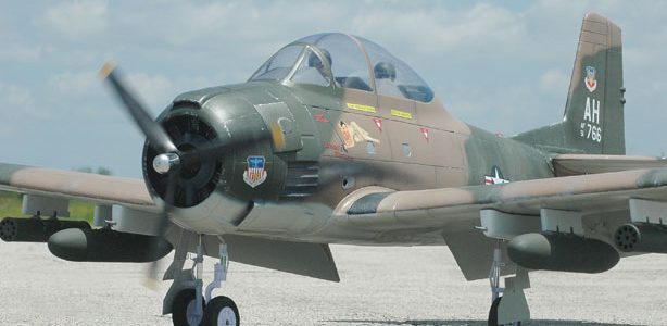 How To: Easy Warbird Makeover