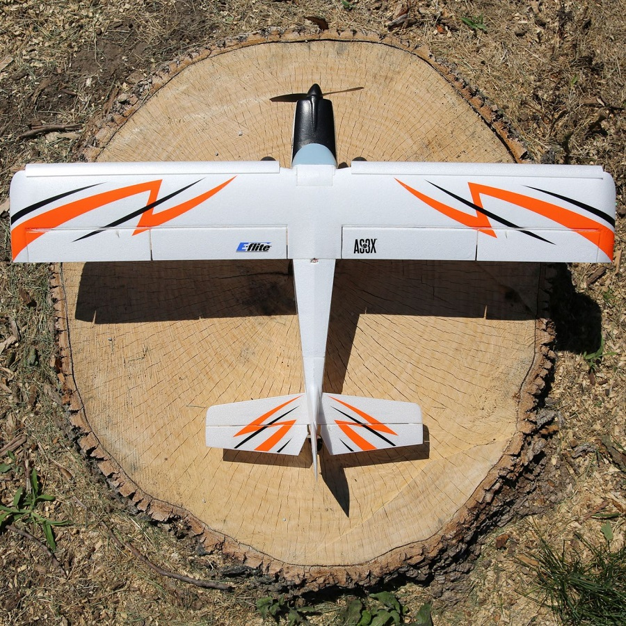 E-flite UMX Timber BNF Basic (3)