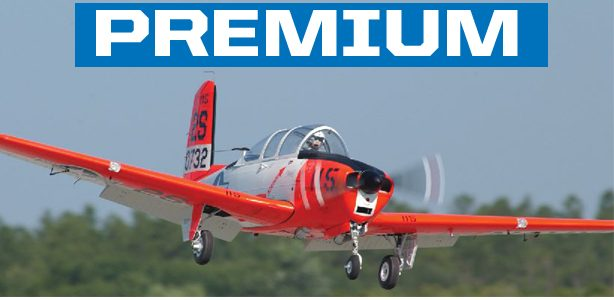 Flying RC Giant Scale Model Airplanes Lightening the Pilot's Workload
