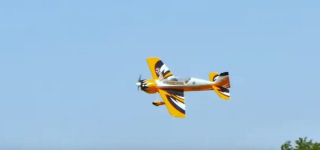RC Model Airplanes Tower Hobbies Sbach 3D ARF VIDEO