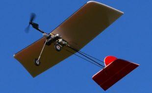 DIY Micro RC Flyer – Quarter Stick